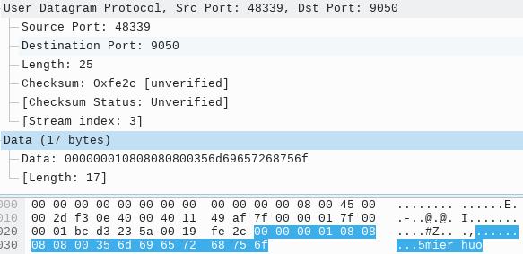 UDP 中继数据包样例